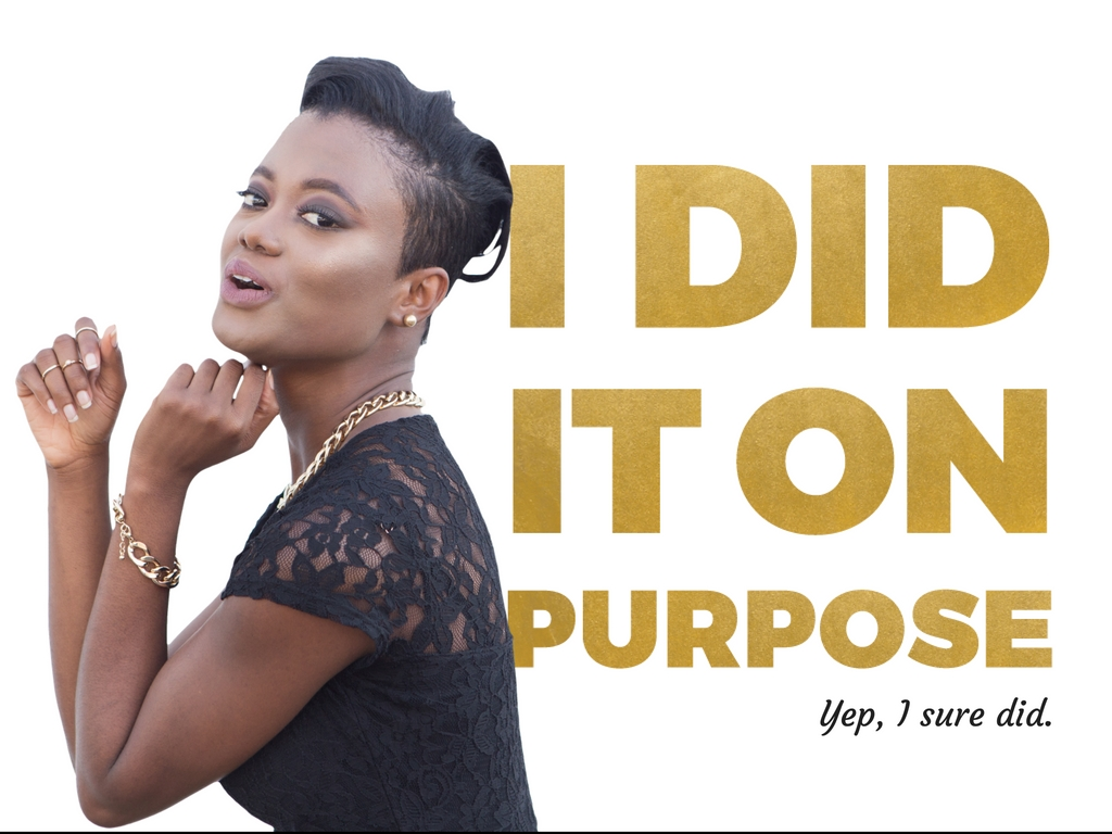 I DID IT ON PURPOSE Challenge for Virtuous Women